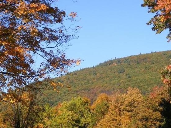 Twice Upon a Time : Brattleboro, Vermont