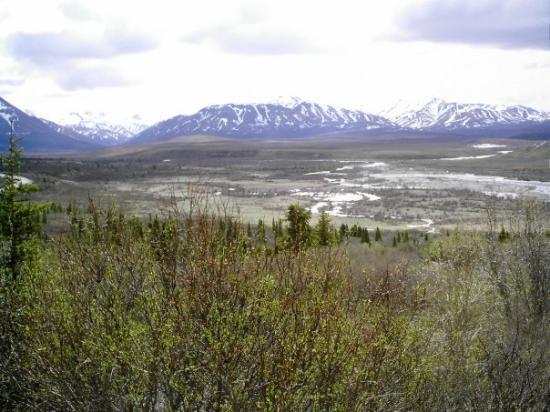 alaska denali denali essay in national park photographic preserve Alaska's majestic denali national park and preserve in denali national park and preserve, alaska (ap photo peak to denali restoring an alaska.