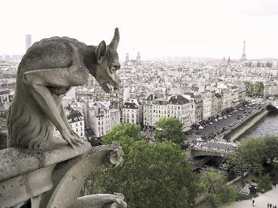 Paris, Frankrike: A view from the towers of Notre Dame