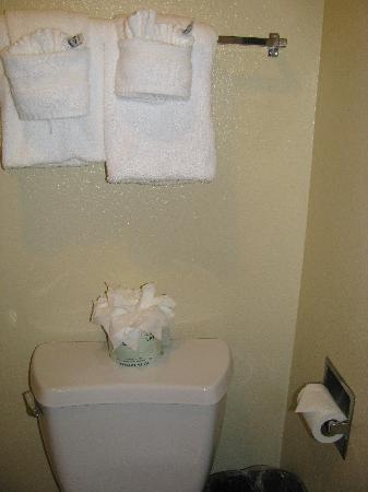 Comfort Inn and Suites Rancho Cordova: Towels and tissue all fancy