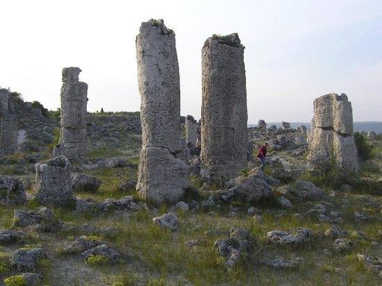 Stone Forest : Steinerner Wald in der Nähe von Varna, Bulgarien