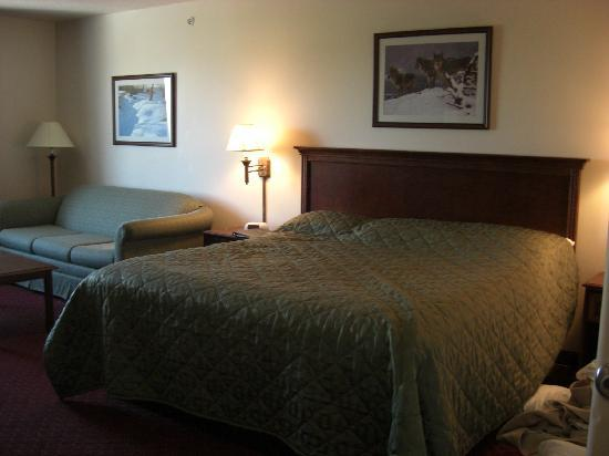 Yellowstone Park Hotel: room-king