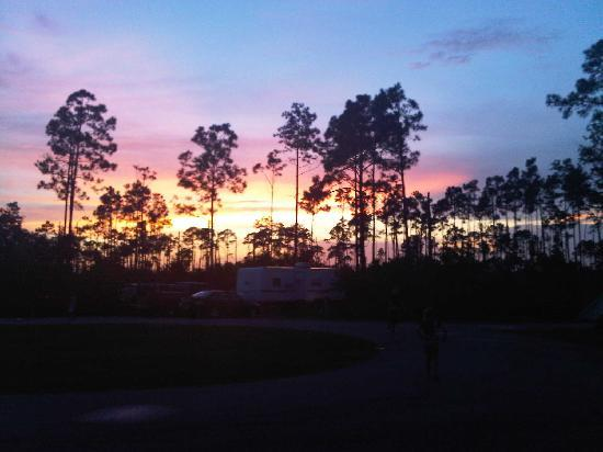 Gulf State Park Campground: Sunset from our campsite