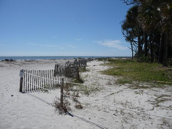Image Result For Hunting Island State Parkel Review