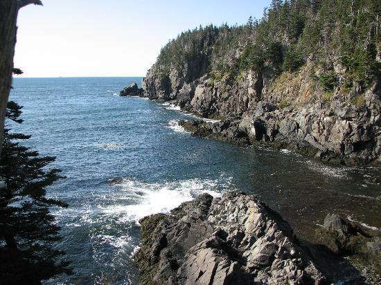 Lubec, Мэн: One of the views along the trail