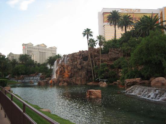 Desert Paradise Resort : Photo 1
