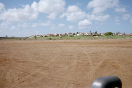 Oranjestad, Aruba : Neighborhood picture on Aruba. Tom Cruises' house is in there somewhere.