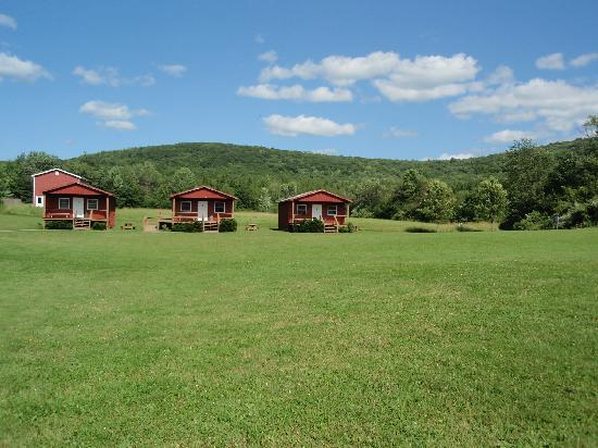 Farm Sanctuary: Cabins Available For Rental