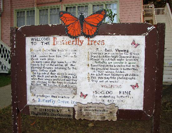 Butterfly Grove Inn: Butterlfy Grove information