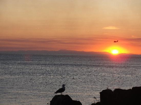 La Scogliera: Sunset from balcony