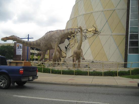 Front Picture Of Children S Museum Of Indianapolis
