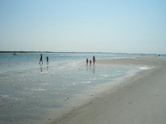 Beaufort, North Carolina: Sand Dollar Isle at Low Tide