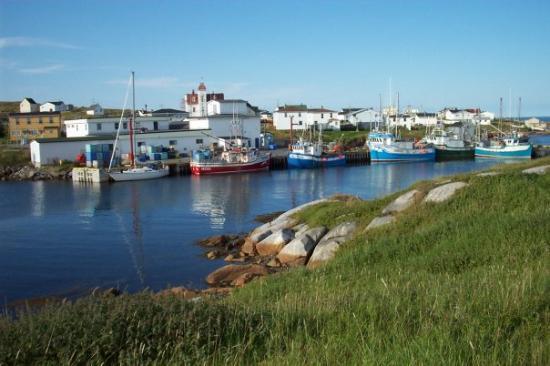 Greenspond B Bay Picture Of Traytown Newfoundland