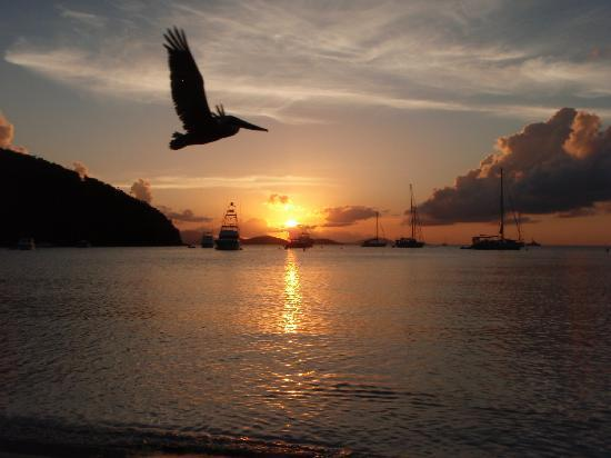 U.S. Virgin Islands: sunset