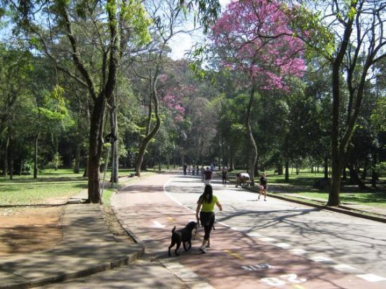 ปาร์คโดอิบิราปูรา ภาพถ่าย