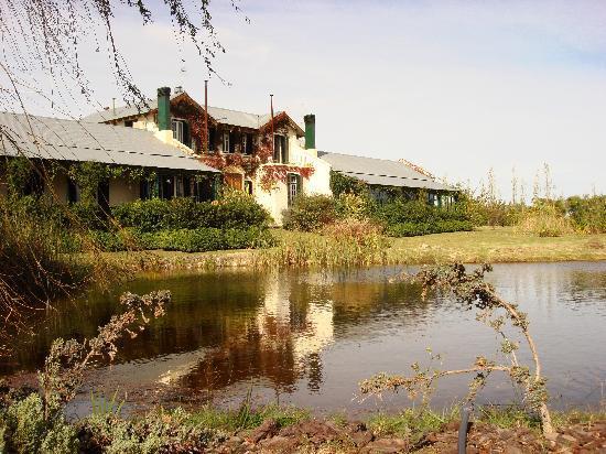 La Casa de los Limoneros: Casa de Los Limoneros
