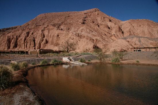 Alto Atacama Desert Lodge & Spa: landscape