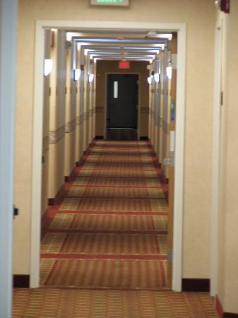 Sleep Inn Minot: hallway