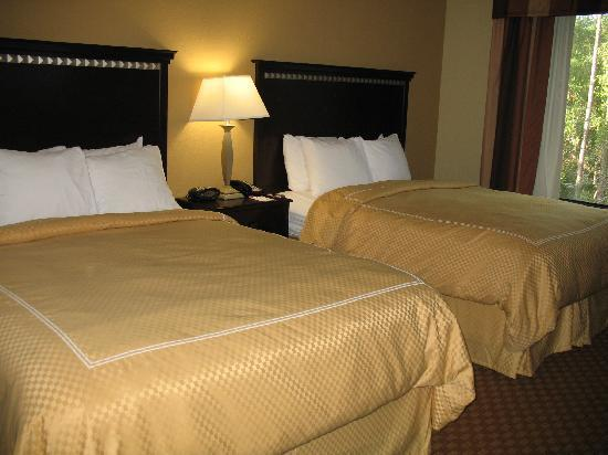 Comfort Suites Kings Bay Naval Base Area: room 222