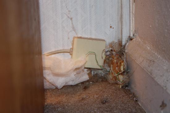 บรุกกิงส์, ออริกอน: The exposed wiring