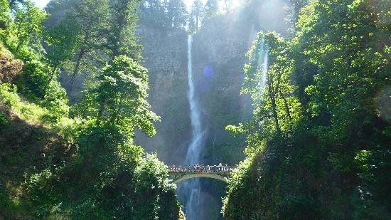 DoubleTree by Hilton Hotel Vancouver, Washington: Multnomah Falls in the Columbia River Gorge