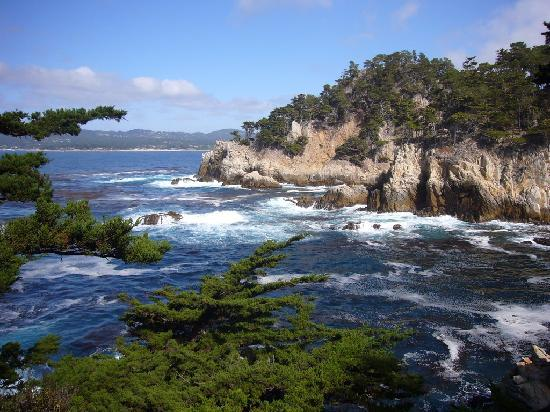 Point Lobos State Reserve: gorgeous scenery