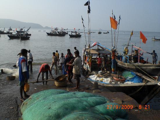 Shrivardhan, India: fishing port
