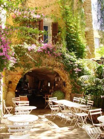 Bormes-les-Mimosas Photo