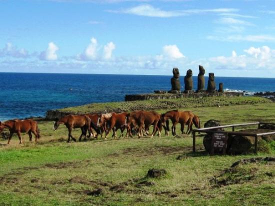 Île de Pâques Photo