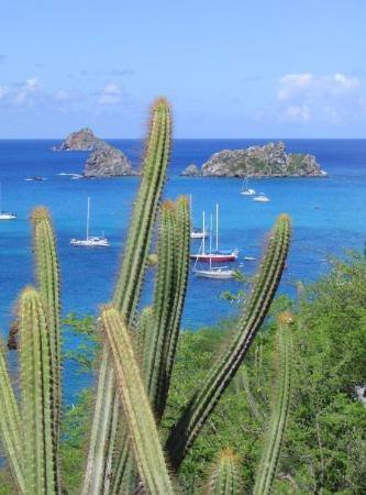 St Barthelemy Caribbean Photo De Saint Barth 233 Lemy Les