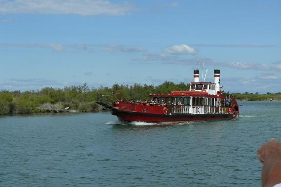 Camargue Nature Park: On the river boat trip