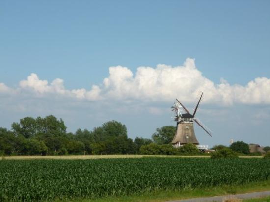 Fohren, Jerman: Oldsum, Fohr windmill.