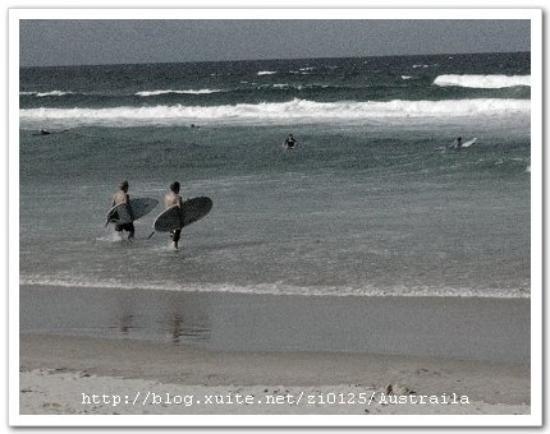 Surfer's Paradise Beach: Surfering.