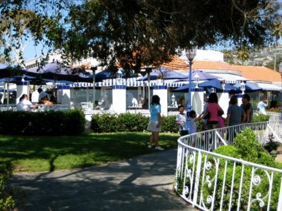 Las Brisas: I had lunch there