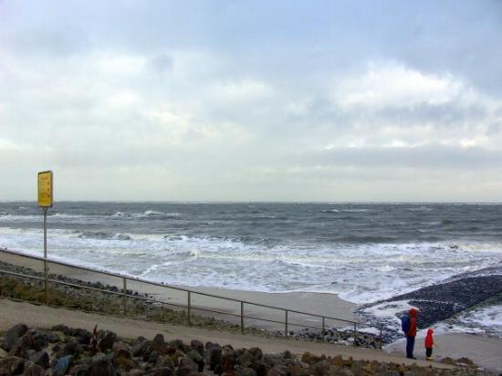 Baltrum, Deutschland: Alles Leben ist Wasser