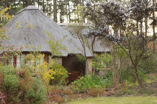 Coral Tree Cottages: cottage