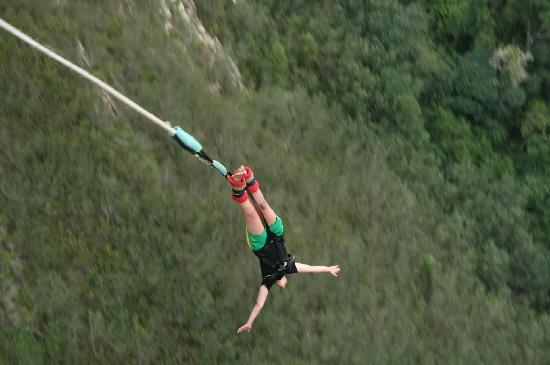 Brookes Hill Suites: Bungee Jumping