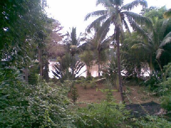 Hotel Ramon : Garden and Cagayan River