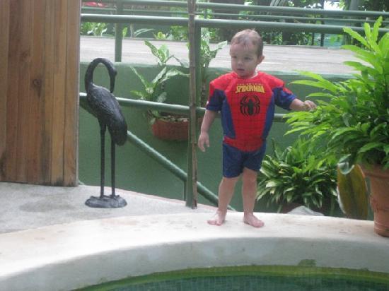 Hy Paradise Inn: spiderman at the pool