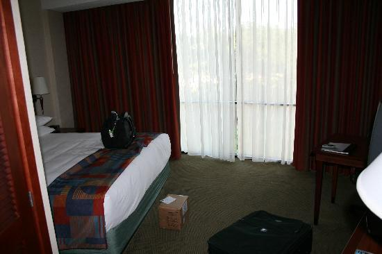 Hyatt Rosemont: King bedroom with large full window (floor to ceiling)