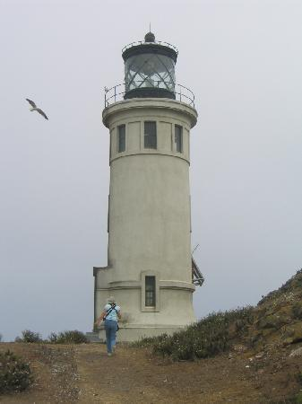 Parque Nacional Channel Islands, CA: Lighthouse