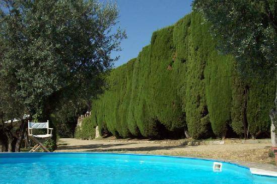Villa Gamberaia: one of the 3 swimming pools