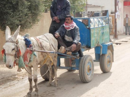 Ba'qubah, Irak: Donkey carts like this one are an uncommon sight.