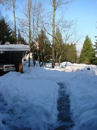 Surrey, Canada: Usually visiting in summer so the sight of so much snow lying around was good. Below the snow is