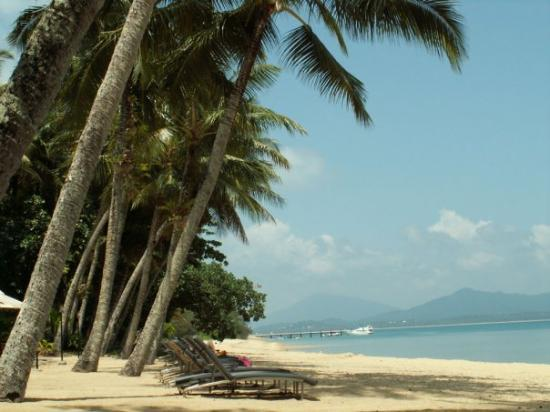 Dunk Island Buildings: Picture Of Dunk Island, Queensland