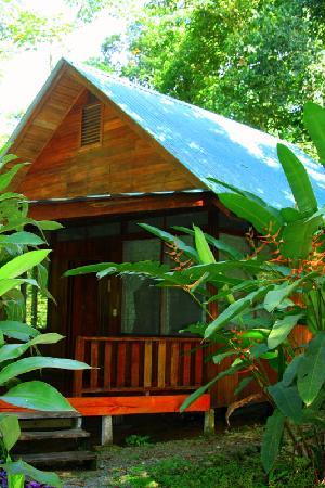 Golfo Dulce Lodge: Our Cabin/Room