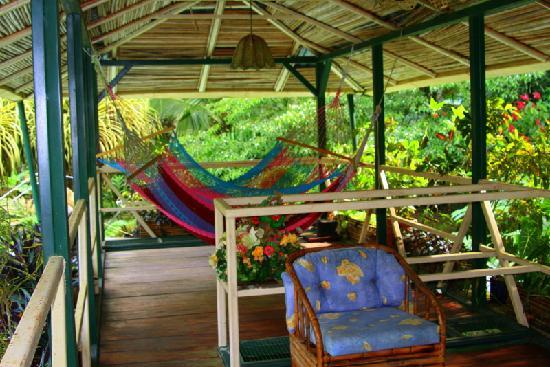 Golfo Dulce Lodge: Above the dining area