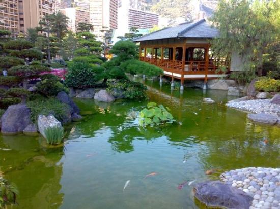 Montecarlo giardini giapponesi foto di monte carlo for Giardini giapponesi