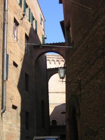Zdjęcie Torrita di Siena