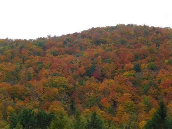 Mont Tremblant Image